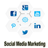 you will learn different platforms of social media marketing